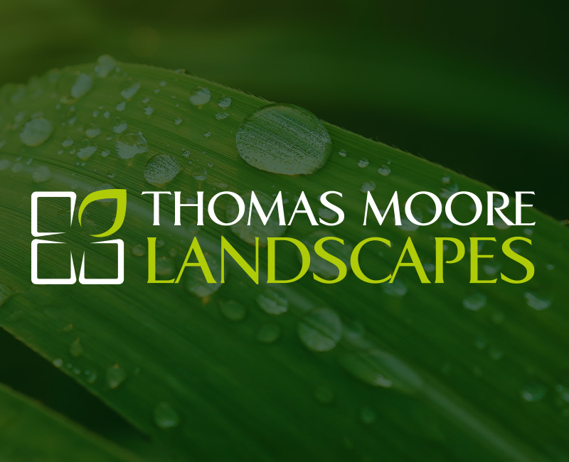 Thomas Moore Landscapes